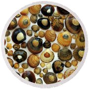 Shell Background Round Beach Towel