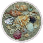 Shell Collection 2 Round Beach Towel