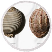 Shell Line Systems Round Beach Towel