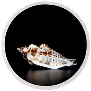 Shell On Leather 2 Round Beach Towel