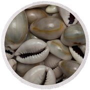 Shell Sigay 1 Round Beach Towel