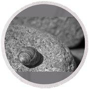 Shells IIi Round Beach Towel