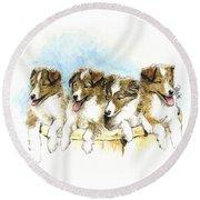 Sheltie Pups Round Beach Towel