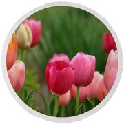Sherbert Color Tulips Round Beach Towel