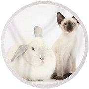 Siamese Kitten And White Rabbit Round Beach Towel