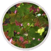 Signs Of Autumn  Round Beach Towel