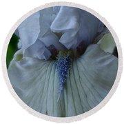 Silky Iris Round Beach Towel