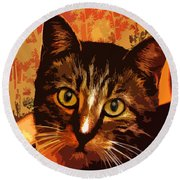 Silly Cat Round Beach Towel