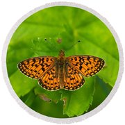 Silver-bordered Fritillary Round Beach Towel