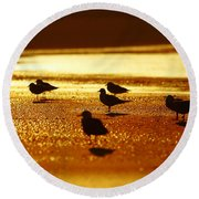 Silver Gulls On Golden Beach Round Beach Towel
