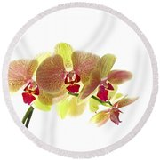 Simplified Orchids I Round Beach Towel