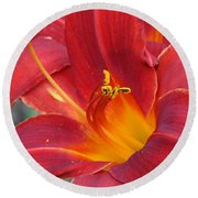 Single Red Lily 2 Round Beach Towel