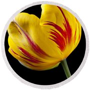 Single Yellow And Red Tulip Round Beach Towel