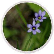 Sisters Of The Purple Plants Round Beach Towel