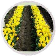 Skagit Valley Tulips 2 Round Beach Towel