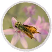 Skipper Butterfly Round Beach Towel