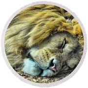 Sleeping Lion Round Beach Towel