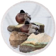 Sleeping Mallards Round Beach Towel