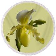 Slipper Orchid Round Beach Towel