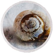 Snail Shell Round Beach Towel