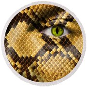 Snake Eye Round Beach Towel by Semmick Photo