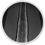 Snake Skin In Black And White Round Beach Towel