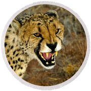 Snarl Round Beach Towel