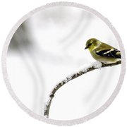 Snow Bird In The Storm Round Beach Towel
