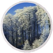 Snow Covered Trees In A Forest, County Round Beach Towel