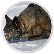 Snow Dog Round Beach Towel
