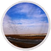 Snow Geese At Rest Round Beach Towel