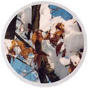 Snow On The Fall Leaves Round Beach Towel