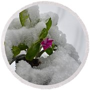 Snow On The Flowers Round Beach Towel