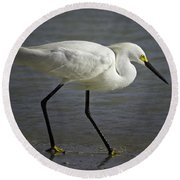 Snowy Egret By The Lagoon Round Beach Towel