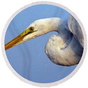 Snowy Egret Ready Round Beach Towel