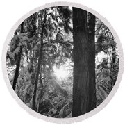 Snowy Forest Bw Round Beach Towel