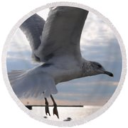 Soaring Gull Round Beach Towel