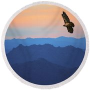 Soaring Red Tailed Hawk At Sunset Round Beach Towel
