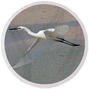 Soaring Snowy Egret Round Beach Towel