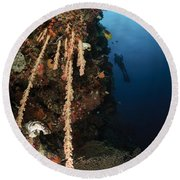 Soft Coral Reef, Indonesia Round Beach Towel
