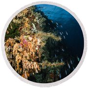 Soft Coral Seascape And Rainbow Round Beach Towel