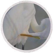 Soft Egret Glow Round Beach Towel
