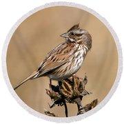 Song Sparrow Round Beach Towel