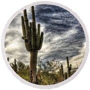 Sonoran Desert Iv Round Beach Towel