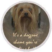 Sorry You're Sick Greeting Card - Cute Doggie Round Beach Towel