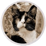 Souls Great And Small 2 Round Beach Towel