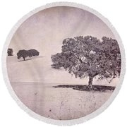 Southern Oaks Round Beach Towel