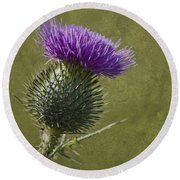 Spear Thistle With Texture Round Beach Towel