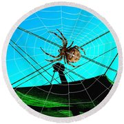 Spider On The Olympic Roof Round Beach Towel
