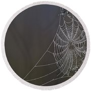 Spider Web Covered In Dew Drops Round Beach Towel